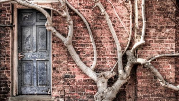 Private door beside tree