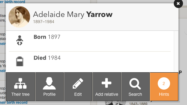 FindMyPast Hints on Profile Summary